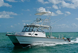 Salt Adventures - Key West Fishing Charter